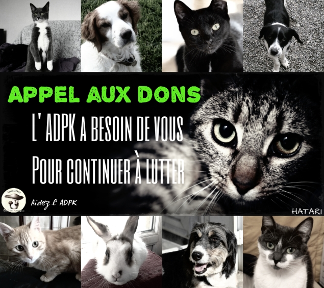 appel aux don pix