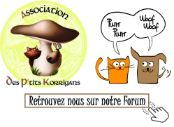 Forum ADPK