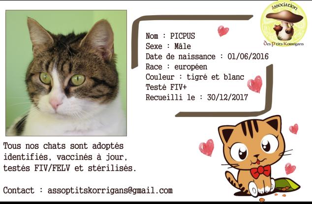 PICPUS_CARD.png