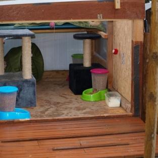 Abri aménagé pour chats nomades